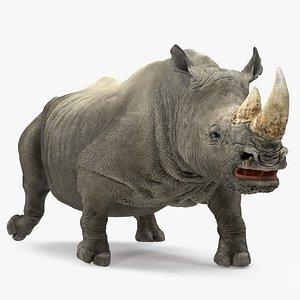 3D rhino walking pose