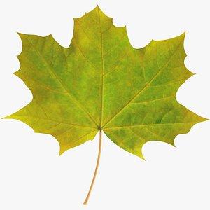 Maple Leaf V3 3D model