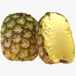 Topless Pineapple model