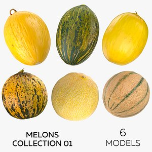 Melons Collection 01 - 6 models 3D model