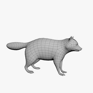 Raccoon model