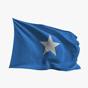 3D Realistic Animated Flag - Microtexture Rigged - Put your own texture - Def Somalia
