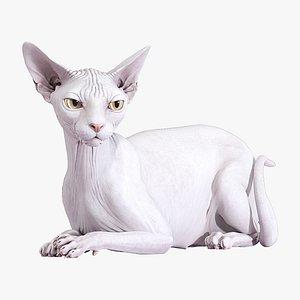Sphynx Cat White Rigged 3D model