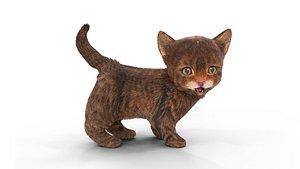 Fur Cute Red Kitten 02 3D model