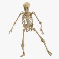 Real Human Female Skeleton Pose 22