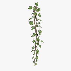 3D model liana plant