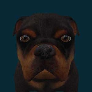 0048 Dog 3D