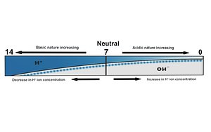 Variation of pH 3D model