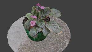 3D Little Flower Vase SCANNED
