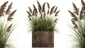 Reeds in a rusty flower pot for the interior 934 3D model