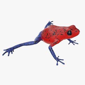 strawberry poison dart frog 3D model