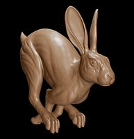 Rabbit Running 3d Print Model
