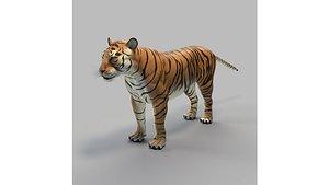 bengal tiger 3D