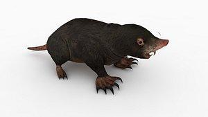 Moles 3D