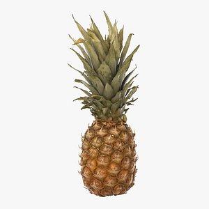 pineapple pine apple 3D model