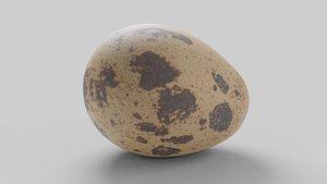 3D model egg quail