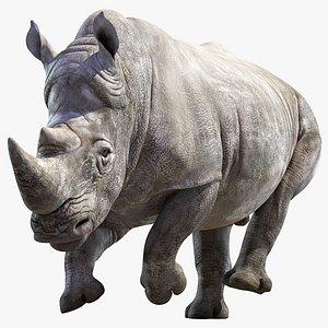 3D Big White Rhino Animated model