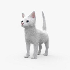 white kitten 3D model