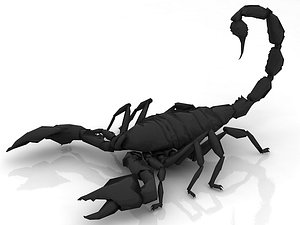 Scorpion - Agressive 3D model