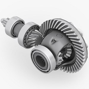 differential with bearing and bevel gears 3D model