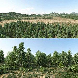 orest landscape 3D model