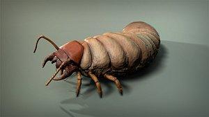 3D model insect larva
