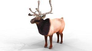 Fur Red Reindeer Bledner 3D model