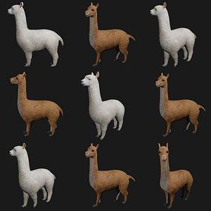 3D model llama rigged
