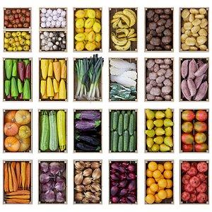 3D pack vegetables fruits model