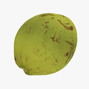 Green Coconut - Real-Time Scanned 3D model
