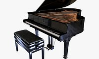 Grand Piano and Bench
