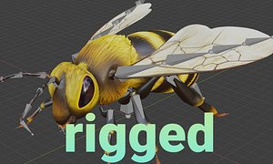 bee animal insect 3D