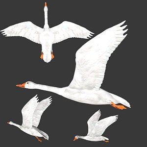 3D Rigged low poly White Goose