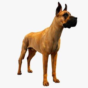 great dane dog model