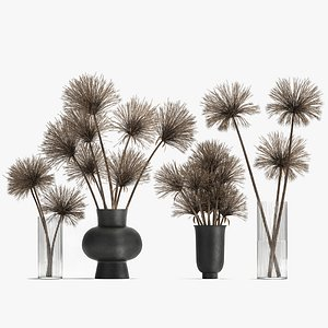 Bouquet of dried flowers Cyperus in a vase 177 3D model