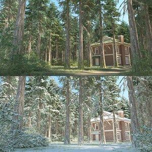 cedar trees 3D model