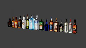 16 liquor bottles model