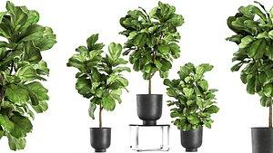3D plants interior pots planter model