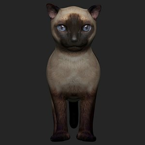 3D fully rigged siamese cat