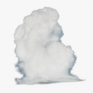 3D model Vdb cumulus cloud type A
