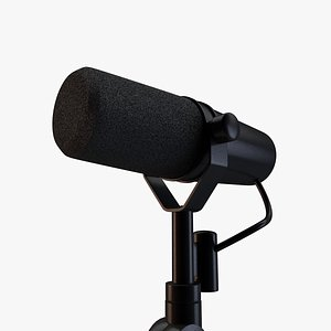 Microphone model