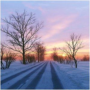 Winter scene 3D