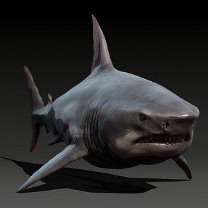 animal shark 3D model