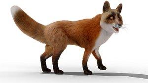 3D FurFoxRigged 02