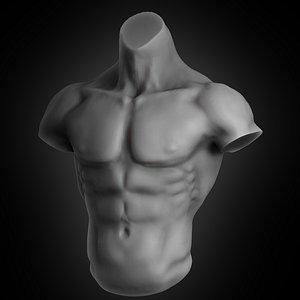 3D human muscular torso