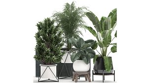 Houseplants in a flowerpot for the interior 928 model