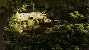3D Half Rotting Fallen Tree Photoscan