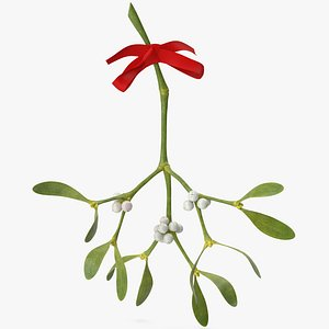 Mistletoe 1 with Red Bow 2 3D