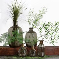 Bouquet of Grass Herb Plant Glass Vases Set