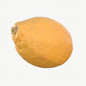 01 hy lemon fruit model